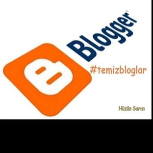 Temiz Bloglar!