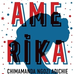Adichie'den Tüm Dünyada Ses Getiren Roman
