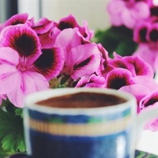 Bol Kahveli 5 Güzellik Sırrı