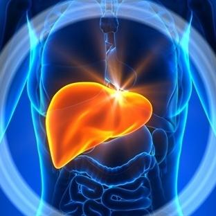 Karaciğerimizde Sorun Olduğunu Nasıl Anlarız?