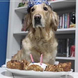 Köpeğinizin severek yiyeceği pasta