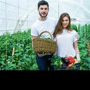 Mutfağınızda organik gıdalara yer açmanız için 5 g
