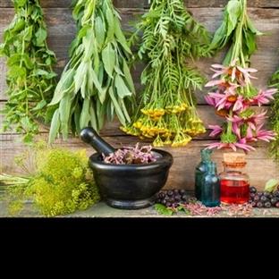 Mutfağınızdaki 15 mucize bitki