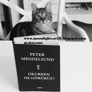 Okurken Ne Görürüz? -Peter Mendelsund