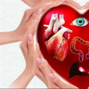 Organ Bağışlamak İçin En Anlamlı Hediye