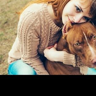 Sadece köpek sahiplerinin anlayacağı 10 şey