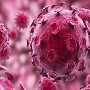 İshaller ve Rota Virüsü Enfeksiyonu
