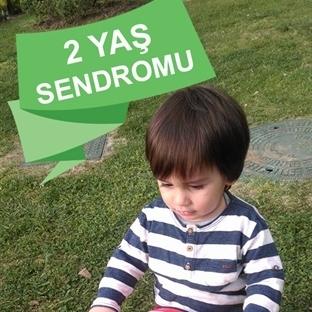 2 Yaş Sendromu - Hayatımızda Neler Oluyor?