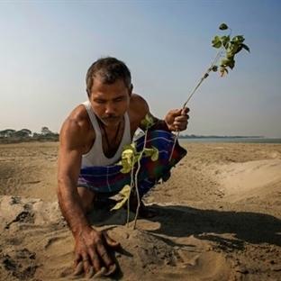 Adasını Kurtarmak İçin Orman Yaratan Adamın Etkile