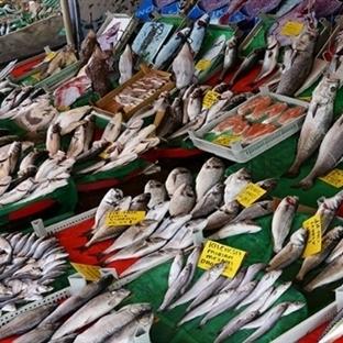 Balık Takvimi: Hangi Balık Ne Zaman Yenmeli?