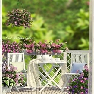Balkonlar Çiçek Açsın