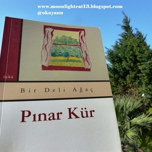 Bir Deli Ağaç - Pınar Kür