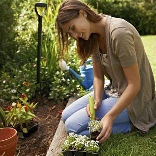 Çiçek Besleyemiyorsanız İlişkiye Hazır Değilsiniz!