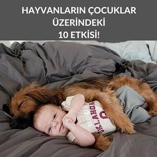 Evcil Hayvanların Çocuklar Üzerindeki 10 Etkisi
