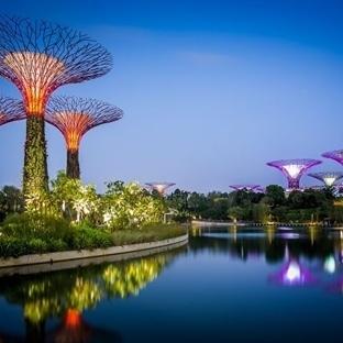 Singapur : Gizemli Bir Gezi ve Lezzet Rotası