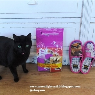 Twigy ve Kötü Kedi Şerafettin ^-^
