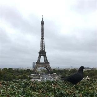 Rüya Şehir Paris için İki Gün Yeter Mi?