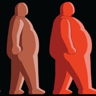 Vücut Kompozisyonu Nedir