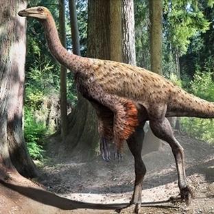 Keneler Dinozorların Düşmanıydı