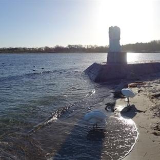 Kuriose Mischung: Lübeck Winter & Beachfealing