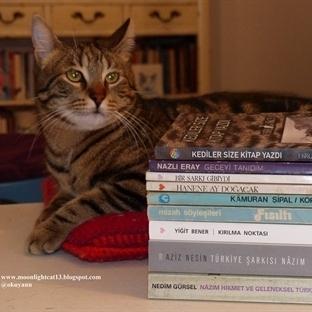 Tezgah Kitabevi Alışverişim