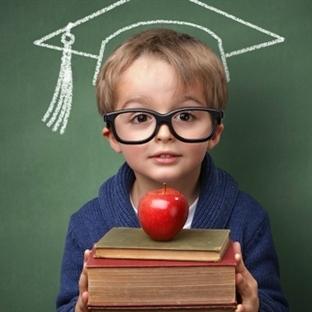 Okul Seçiminde Nelere Dikkat Etmek Gerekir?