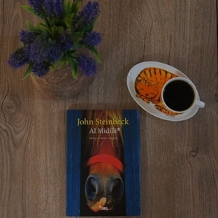 Al Midilli - John Steinbeck