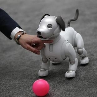 CES Teknolojileri: Robot Köpekler, Katlanır TV'ler
