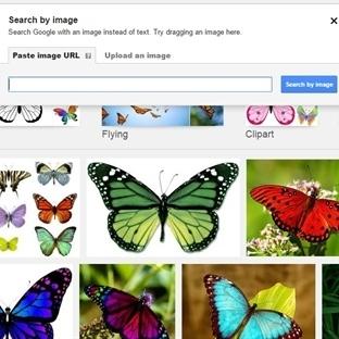 Google'da Resim Aramanın İncelikleri