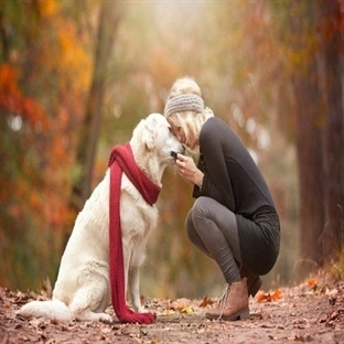 Köpeklerin Zaman Algısı Var Mı ?