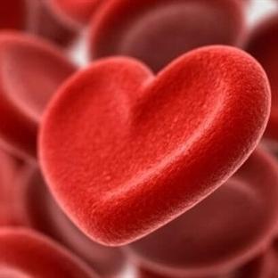 Kolesterol ile Kalp İlişkisi
