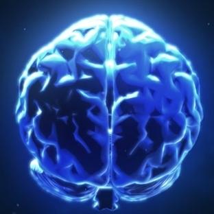 Üç Kişi Arasında Beyinden Beyine İletişim Kuruldu
