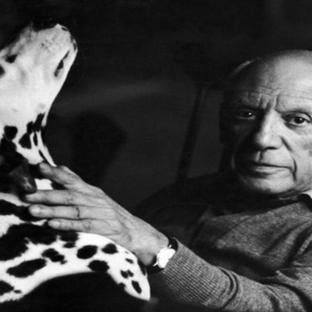 Ünlü Sanatçıların ve Mimarların Evcil Hayvanları
