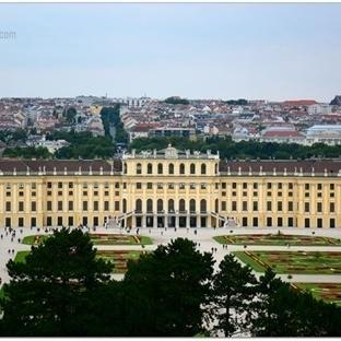 Viyana'dan İzler ve Yansımalar