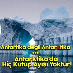 Antarktika Hakkında Ağızları Açık Bırakan 20 Bilgi