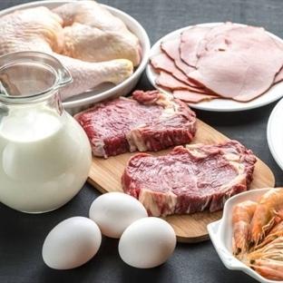 Hayvansal Protein mi Bitkisel Protein Mi?