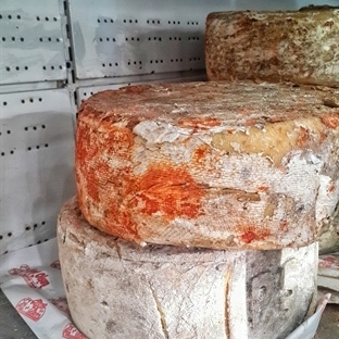 Peyniri Bebek Muamelesi ile Büyüten Şehir-KARS