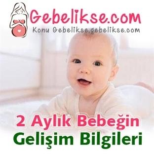 2 Aylık Bebeğin Gelişim Bilgileri