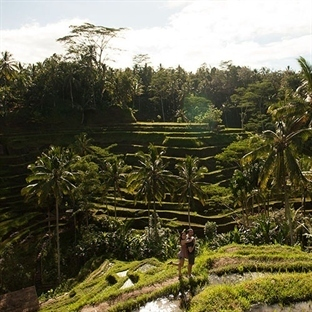 Bali Adası Nerede?