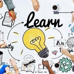 Beynimiz Nasıl Öğrenir ve Öğrenmede İki Anahtar