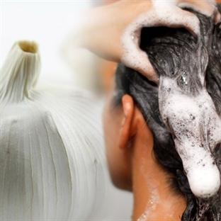Sarımsak özlü şampuan saç uzatır mı?