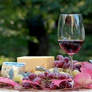 Amatörler için Şarap Kılavuzu