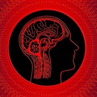 Beyninizin Psikolojisini Anlamak İster misiniz?
