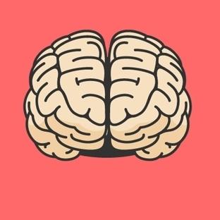 En Karmaşık Organ Beyin Hakkında 50 İlginç Gerçek