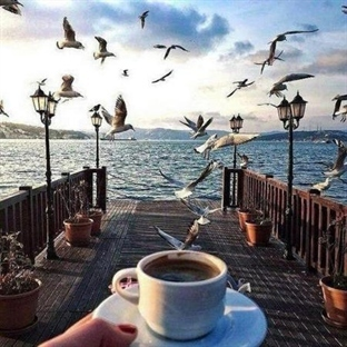 Bi Kahve Bi Sohbet