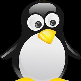 Linux Kullanıcı Tecrübelerim
