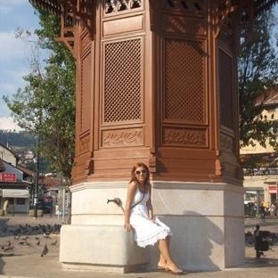 Bosna-Herkes Gezisi
