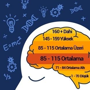 Türkiye'nin IQ Ortalaması En Yüksek 30 Şehri