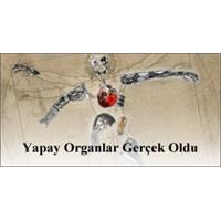 Yapay Organlar Gerçek Oldu
