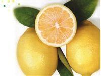 Sarımsaklı Limon Suyu